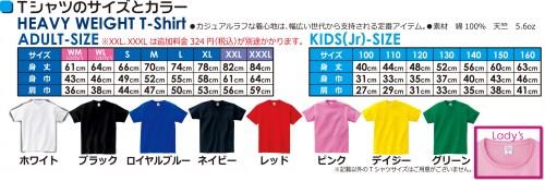 1008円Tシャツサイズと本体色